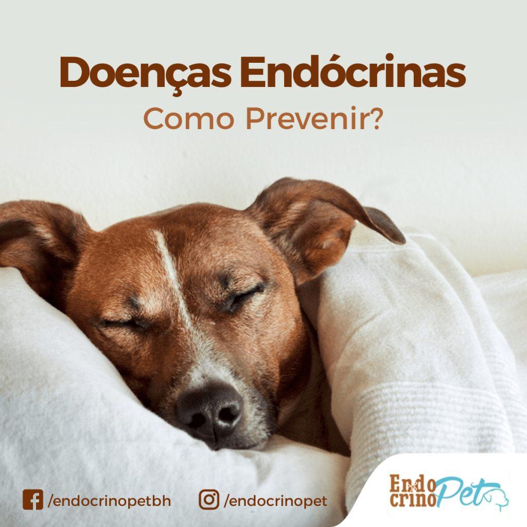 Prevenção de Doenças Endócrinas